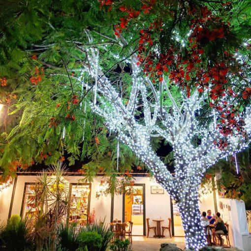 9 fotografias mais bonitas de Pirenópolis em dezembro valenttinecafe