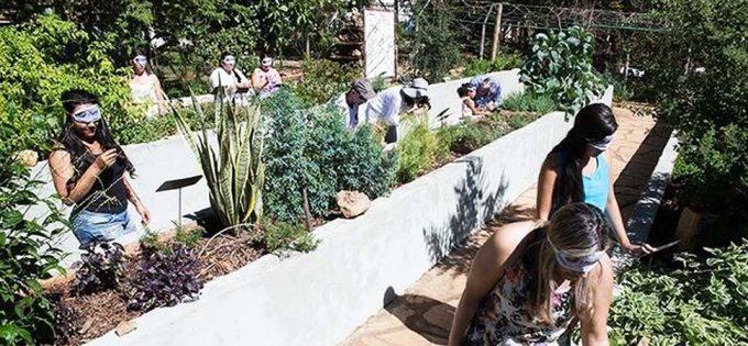 Refúgio Avalon, o local ideal para renovar suas energias jardim
