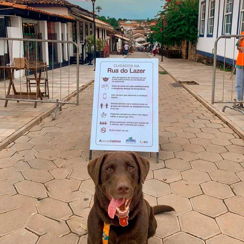 Viaje com seu bichinho - 15 lugares Pet Friendly em Pirenópolis Bares / Restaurantes